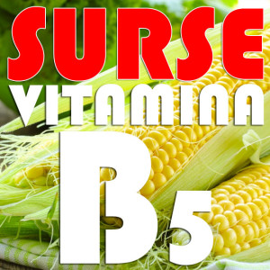 Surse-naturale-Vitamina-B5